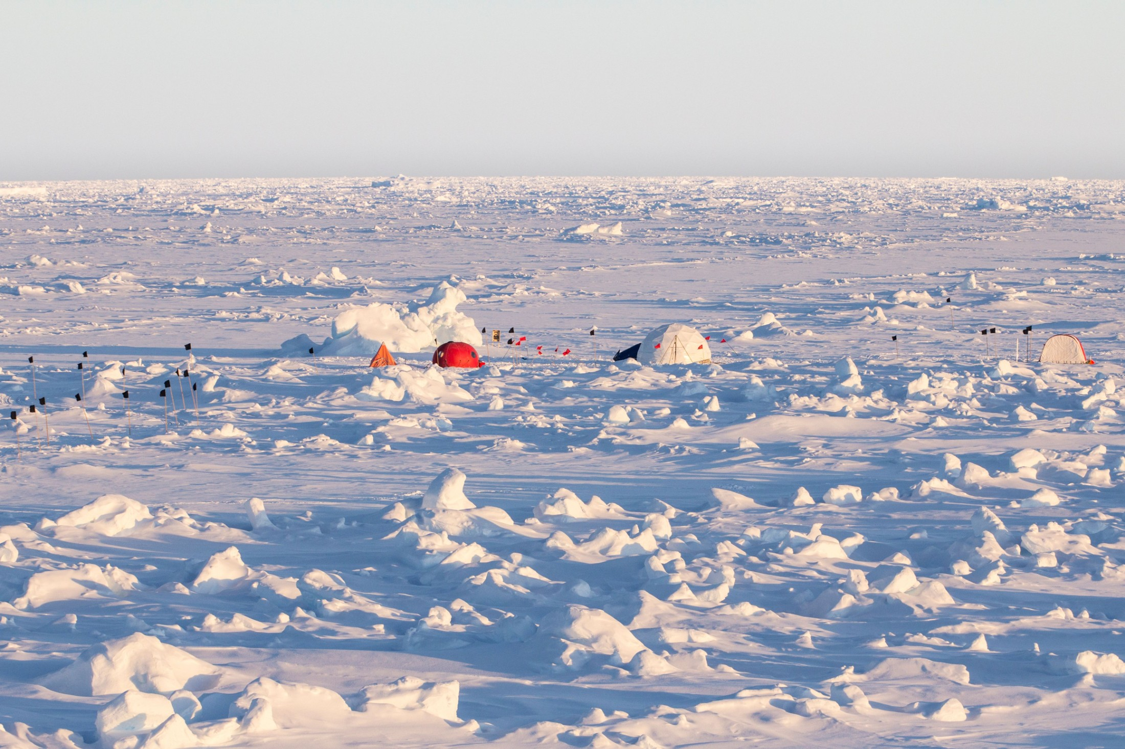 Interview with Arctic Council Observer: Japan